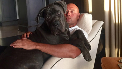 The Players' Tribune Meeting That Led To Jeter's Dog Article