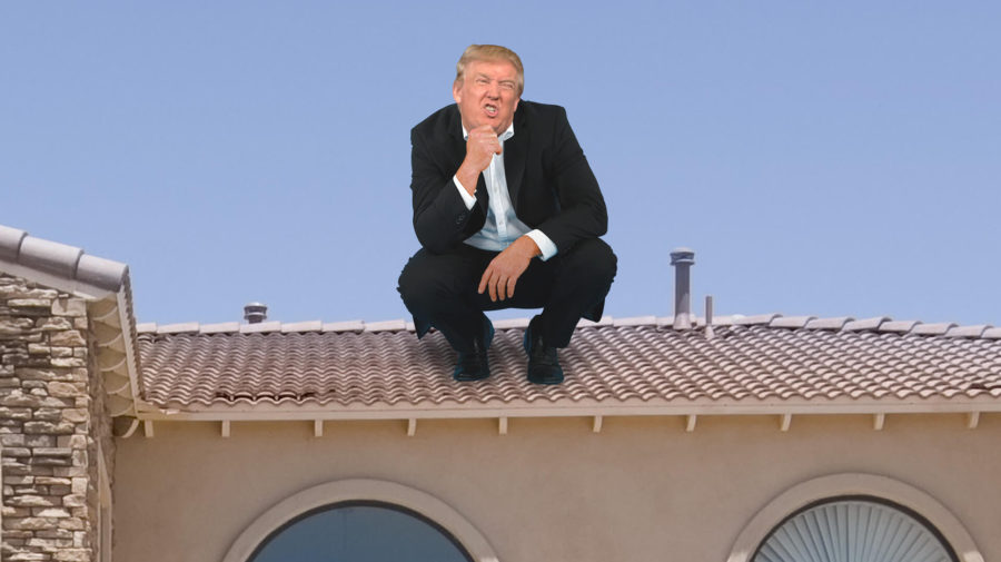 Donald Trump Pooped On My Roof On 9/11