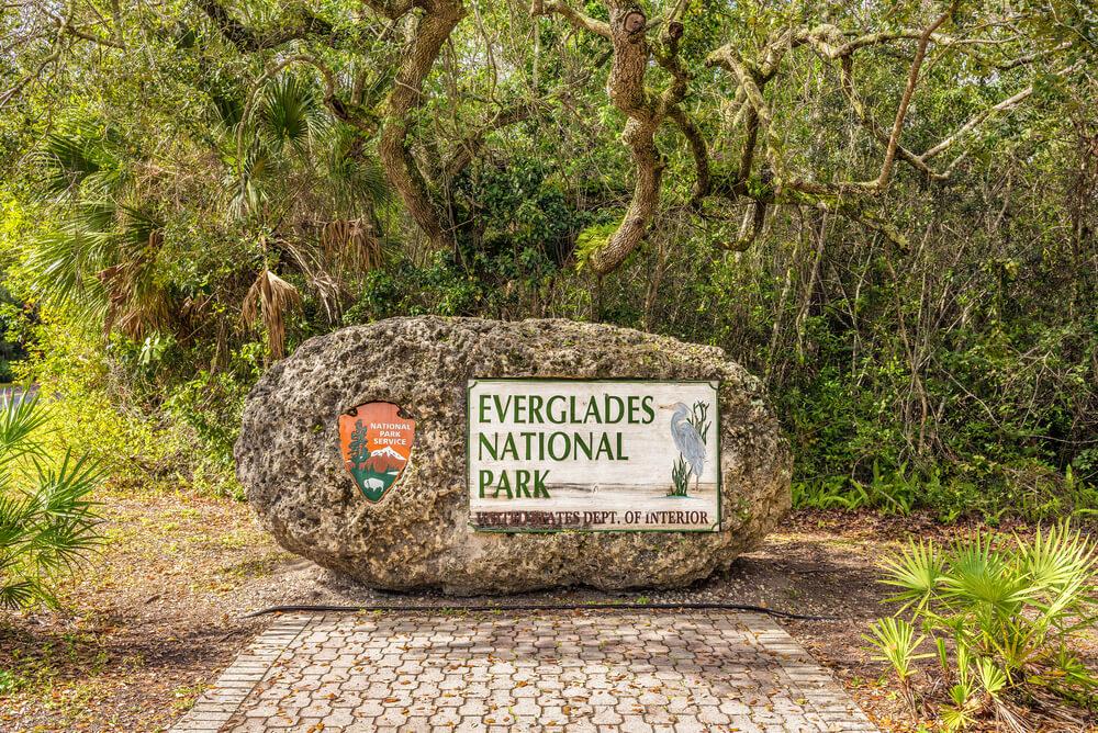 essay on everglades national park Everglades everglades national park miami dade county florida south florida south florida metropolitan area florida keys florida bay monroe county florida.